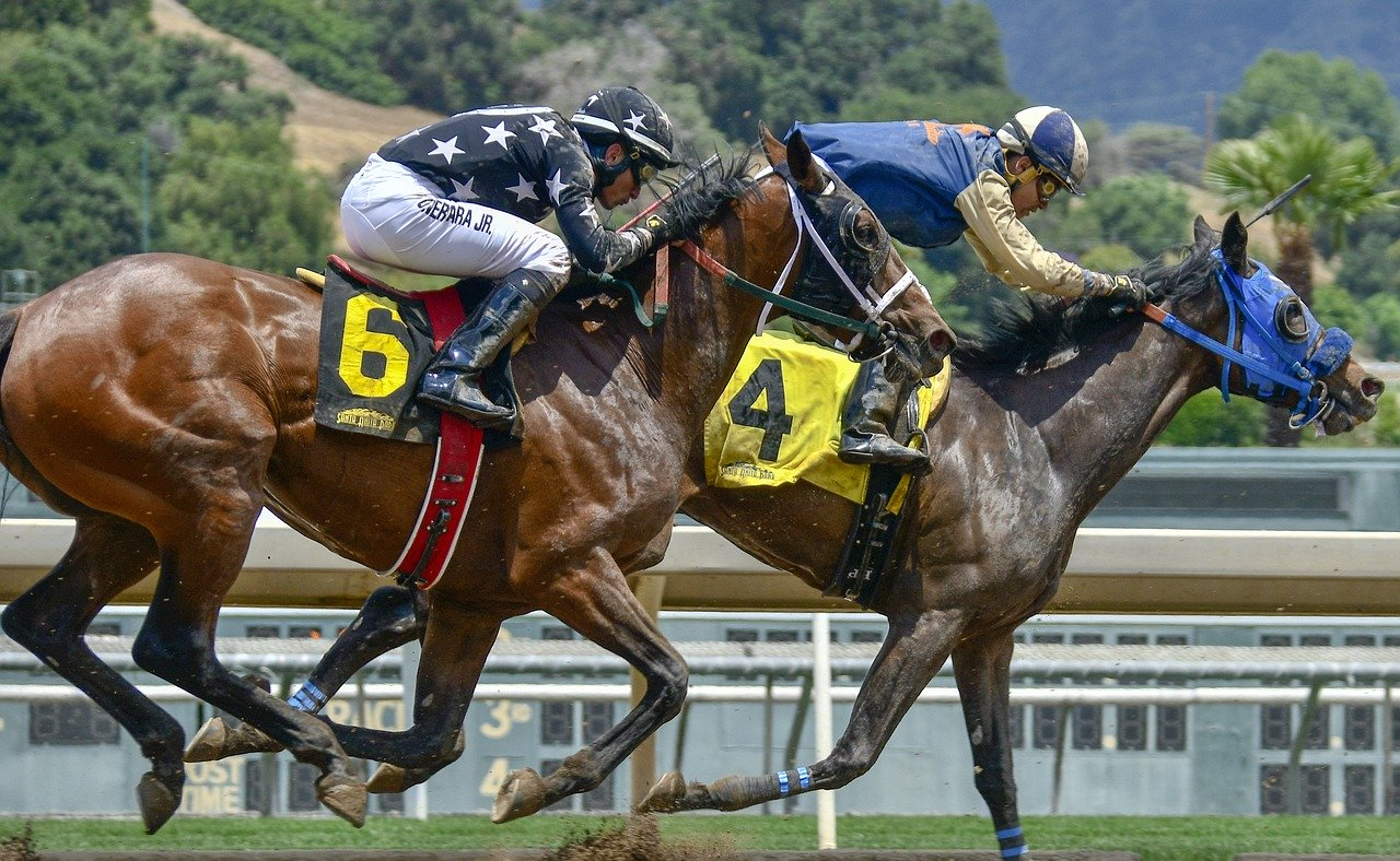Tips to Bet on the Horses